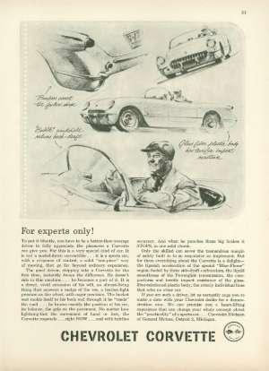 February 19, 1955 P. 80