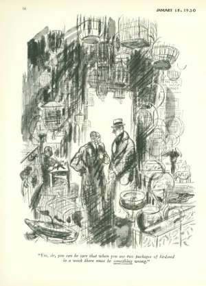 January 18, 1930 P. 17