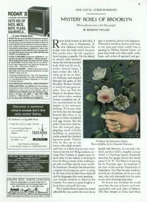 July 8, 1996 P. 41