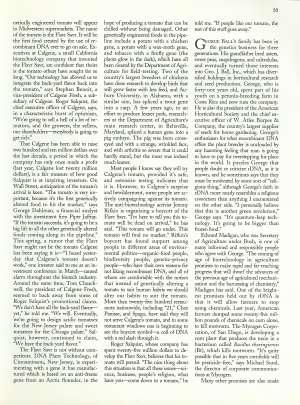 July 19, 1993 P. 32