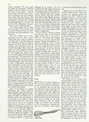 November 26, 1984 P. 41