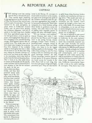 October 7, 1991 P. 103
