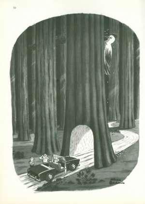 October 7, 1967 P. 51