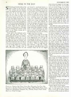 November 27, 1989 P. 44