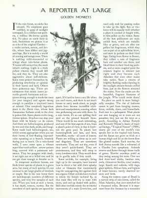 June 24, 1991 P. 36