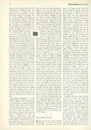 November 22, 1976 P. 38