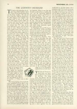 November 20, 1954 P. 38