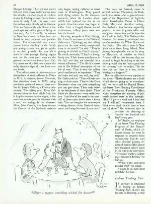 April 17, 1989 P. 32