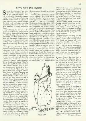 November 22, 1982 P. 41