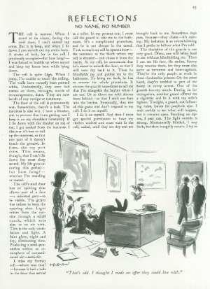 April 20, 1981 P. 45