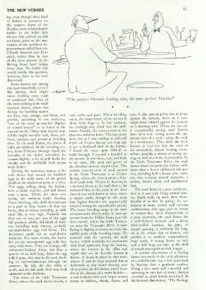 January 8, 1979 P. 52