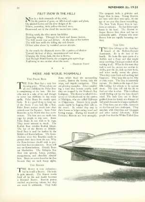 November 21, 1931 P. 20