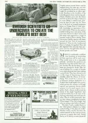 October 26, 1998 P. 243