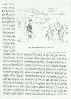 November 24, 1980 P. 46
