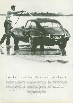 February 20, 1965 P. 131