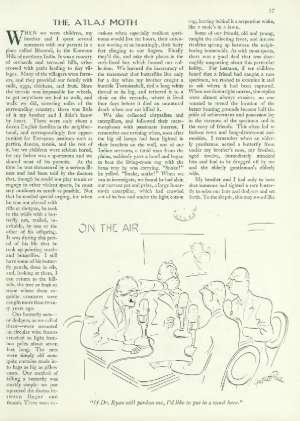 July 21, 1945 P. 17