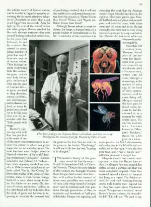 April 5, 1999 P. 44