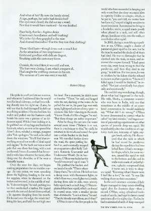 May 24, 2004 P. 58