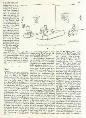 November 19, 1984 P. 43