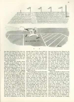 November 19, 1984 P. 58