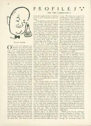 July 2, 1955 P. 28