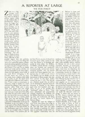 February 6, 1984 P. 83