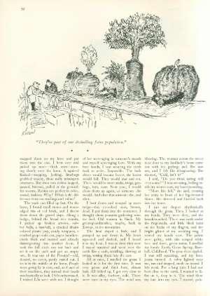 May 4, 1968 P. 51