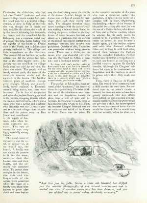 February 1, 1982 P. 128