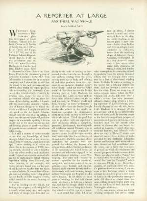 January 16, 1954 P. 31