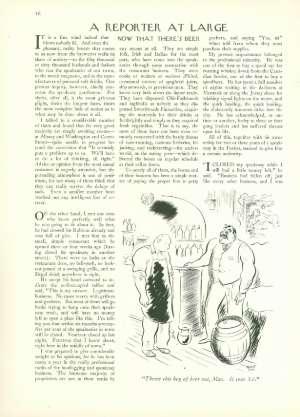 April 15, 1933 P. 46