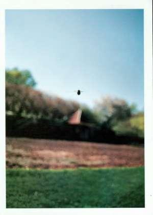 October 14, 2002 P. 196