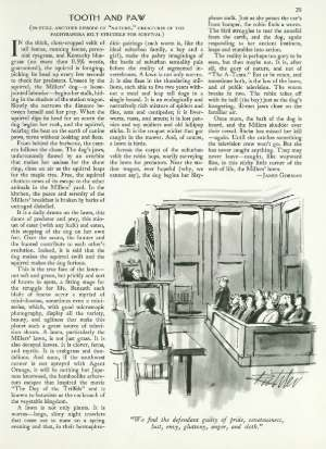 December 24, 1984 P. 28