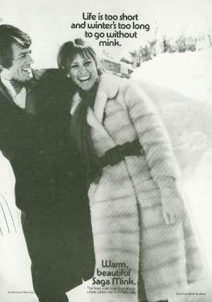 November 7, 1970 P. 133