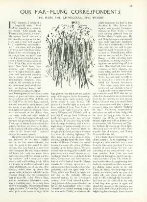 August 10, 1963 P. 31