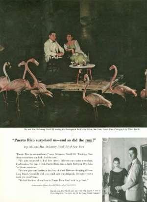 August 22, 1959 P. 101
