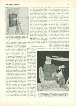 May 19, 1928 P. 22