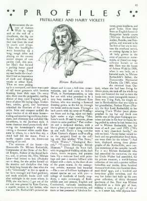 October 19, 1987 P. 45