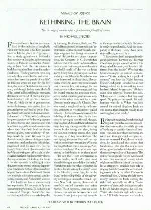 July 23, 2001 P. 42