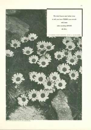 January 27, 1934 P. 44