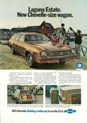 February 10, 1973 P. 96
