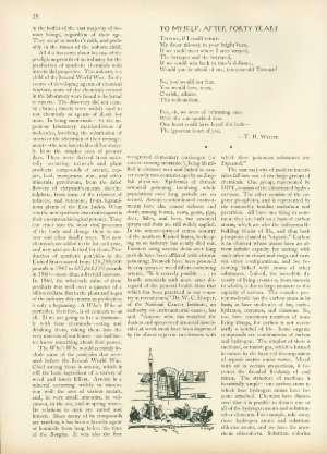 June 16, 1962 P. 38