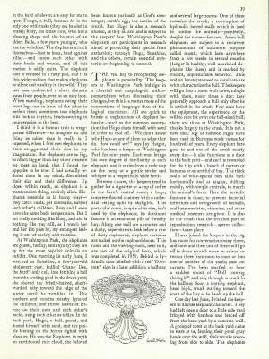 January 23, 1989 P. 38