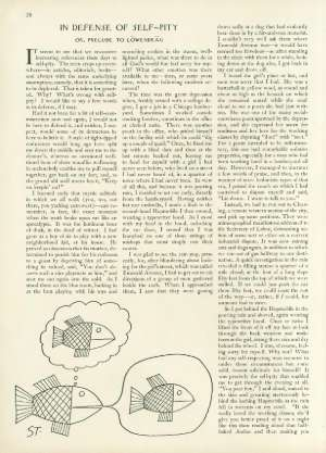February 24, 1962 P. 28