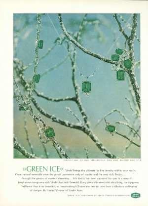 December 8, 1962 P. 213