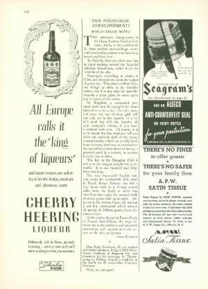 November 23, 1935 P. 101