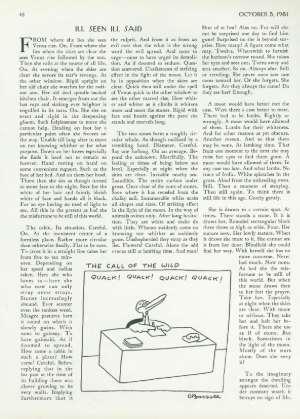 October 5, 1981 P. 48